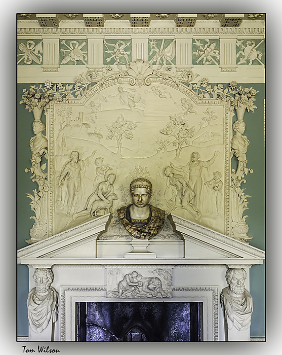 photoblog image Saltram - fireplace