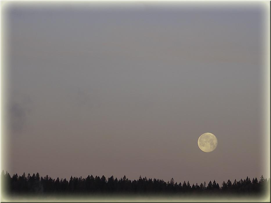 photoblog image Winter moon 2