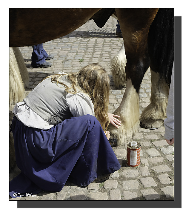 photoblog image Hoof Polishing