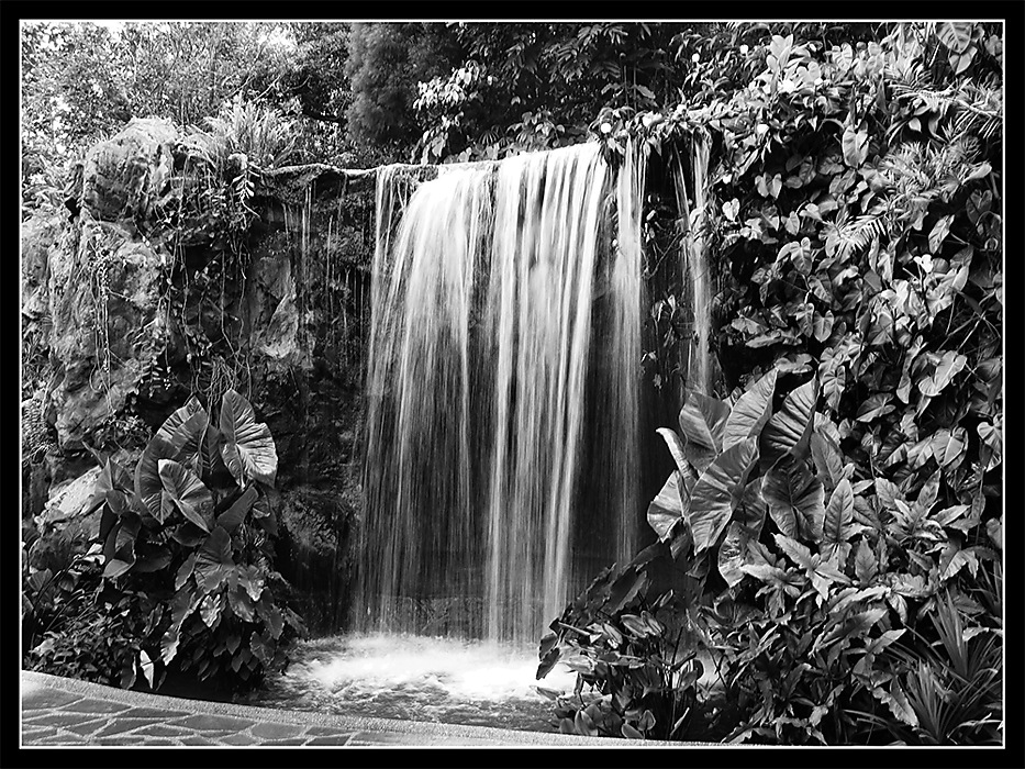 photoblog image Water feature in B&W